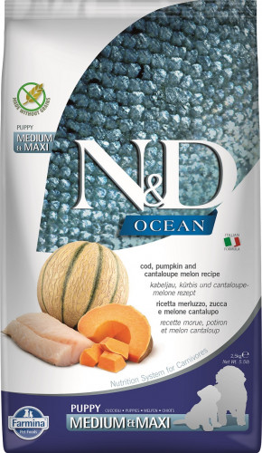 N&D Ocean Dog Cod, Pumpkin and Cantaloupe Melon Puppy Medium & Maxi